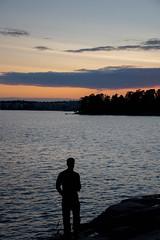 20150717-DSC_1403 (Diahi) Tags: nature finland vuosaari 2015 uutela d7200
