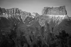 Mont Aiguille (Grozibou38) Tags: bw mountain nature montagne landscape nikon nb paysage vercors sommet d90 rhnealpes crtes pnr montaiguille parcnaturelvercors