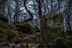 Stein 1776 (Fooß) Tags: laub natur fels wald stein baum moos heimat antik finster traumschleife