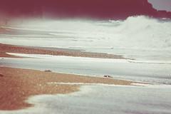 IMG_4382 (anroir) Tags: espaa beach nature andaluca sand waves playa es almera cabodegata aguaamarga lasnegras parquenaturalcabodegata
