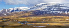 Mountains in Eastern Iceland (Gabriela Iacobuta) Tags: houses house mountain snow cold water field grass river flow iceland spring ngc north freezing dry plain 5photosaday
