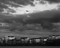 Air Traffic (redfurwolf) Tags: blackandwhite bw storm building water architecture clouds airplane europe sweden stockholm seagull sthlm sonyalpha redfurwolf