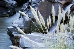 Las Melosas (Mar Cifuentes) Tags: chile naturaleza nature waterfall agua cajondelmaipo largaexposicion longexpo lasmelosas efectoseda