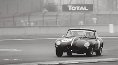 Vintage Jaguar type E Le Mans 2016 V2V ( Mathieu Pierre photography) Tags: sport de automobile voiture racing course mans le e type jaguar audi bugatti circuit extrieur r8 2016 vhicule v2v