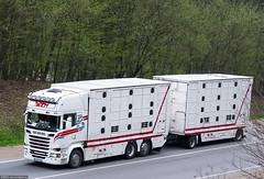Scania R580 V8 Streamline Topline / Bardy Bresse (F) (almostkenny) Tags: france truck camion f livestock v8 scania streamline lkw topline bardy ciarwka r580 hp500 bardybresse