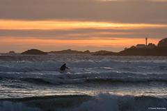 Derek W.- Tofino Surfer 2 (Derek Walmsley) Tags: ocean sunset surf surfing tofino surfers 2016