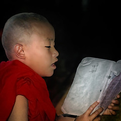 learning (digitized slide) (fifich@t-Franise-growing physical disability) Tags: portrait book asia child emotion burma buddhist monk monastery learning epson inlelake reddress nikonf80 fujivelvia birmanie swansong analogpicture hinayana frs easterday2016 easterday2016crisis smallvehiclebuddhism