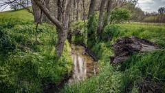 Clary Creek (myoldpostcards) Tags: road trees green texture water rural creek reflections season landscape illinois spring stream country il hills rd whitecemetery centralillinois menardcounty myoldpostcards vonliski clarycreek