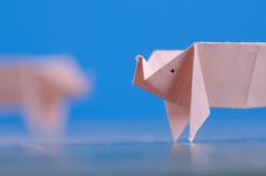 Paper Pigs (benjaminjohnson1983) Tags: pink macro paper pig origami flickr pigs minimalism hertfordshire hemelhempstead 2016 macromondays beginswiththeletterp