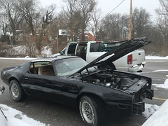 """1978 Bandit Trans Am • <a style=""""font-size:0.8em;"""" href=""""http://www.flickr.com/photos/85572005@N00/26239761465/"""" target=""""_blank"""">View on Flickr</a>"""