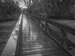 UK - Scotland - Luss (Marcial Bernabeu) Tags: uk bridge rain puente scotland lluvia unitedkingdom united kingdom escocia raining bernabeu reino unido reinounido luss marcial bernabu granbretaa