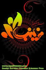 Salam Bibi Zainab | apniwahdat (apniwahdat) Tags: art social informations service shia bibi inspiring zainab aewsome