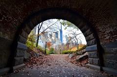 Central Park-Inscope Arch, 11.28.15 (gigi_nyc) Tags: nyc newyorkcity autumn centralpark fallfoliage inscopearch