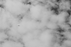 Paper Plane (jaciskelton) Tags: sky blackandwhite cloud monochrome make paper paperplane