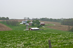 Winding Road (ramseybuckeye) Tags: life road county ohio house art barn fence post pentax farm silo winding perry dandelions