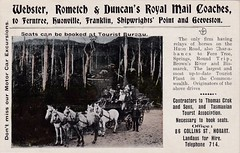 Webster, Rometch & Duncans Royal Mail Coaches, Tasmania - very early 1900s (Aussie~mobs) Tags: vintage franklin coach transport australia advertisement tasmania hobart geeveston huonville ferntree advertisingpostcard royalmailcoach shipwrightspoint websterrometchandduncan