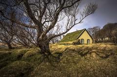 Icelandic Turf Church (Camera_Shy.) Tags: church circle landscape golden iceland nikon chapel turf hof d810 hofskirkja