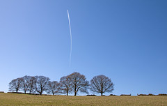 Of Trees and Trails (SydPix) Tags: blue trees sky green landscape countryside aircraft derbyshire jet trails aeroplane vapour sydyoung