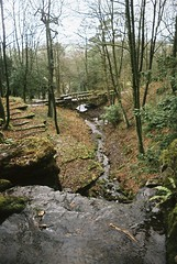 (Fellhunter) Tags: travel trees england nature gardens forest 35mm river photography countryside waterfall woods stream olympus rivington analogue om developed englishcountryside 35mmphotography terraced filmphotography travelphotography analoguephotography rivingtonterracedgardens photographersoftumblr originalphotographers