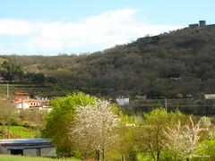 guas Frias (Chaves) - ... as rvores floridas, as casas e o Castelo ... (Mrio Silva) Tags: primavera portugal paisagem castelo casas maio chaves aldeia trsosmontes 2016 illustrarportugal guasfrias mriosilva lumbudus