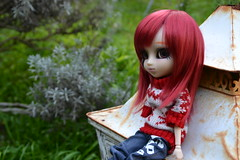 DSC_3204 (DollEmiou) Tags: red cute beautiful garden eyes dolls makeup jardin pullip redhair poupe obitsu nezumi stica beautifuldoll pullipfc pullipsticafc