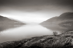 Celtic Light (CliveM-2015) Tags: autumn trees mist lake mountains monochrome landscape freedom scotland blackwhite woods nikon soft loneliness quiet peace lock smooth tranquility stillness d800 organisation rowardennan 24120f40