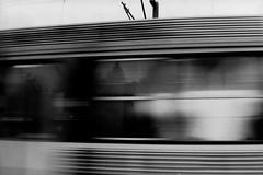 PARCELLE 16-005_32 (gyjishukke) Tags: monochrome analog train wagon noiretblanc minoltax700 grain hc110 reflets ilford argentique sncf vitesse 1600iso delta400 20 selfdevelopment selfprocessing dilb file 13min30sec believeinfilm numerisationpourlecture