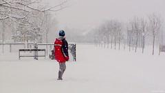 Egyedl a tli parkban (Van'elise) Tags: tj tjkp gyerekek emberek tl fot gyermek