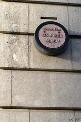 06fv6r (regisdidier15) Tags: street nikon rue ville d300