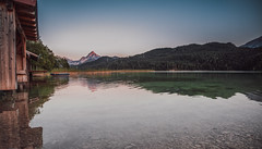 seascape (dastine) Tags: travel trees mountain lake mountains alps reflection water forest germany landscape europe alpen weisensee