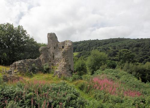 Caergwrle Castle