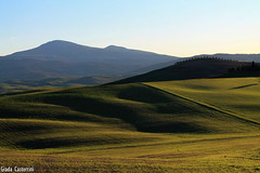 Curves (Giada Castorrini) Tags: blue winter sky cold nature landscape lights shadows place curves windy tuscany pienza valdorcia colline