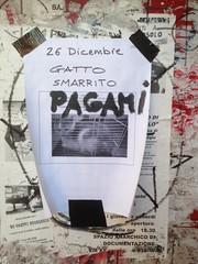 Pagami (GrusiaKot) Tags: urban writing annuncio advertisment scritte annunci urbani