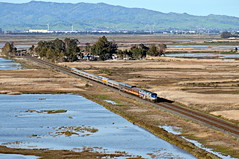 Amtrak 957 (caltrain927) Tags: california ca railroad heritage cars car train private fun paint pacific union special amtrak bahia passenger reno ge scheme pv unit varnish p42dc