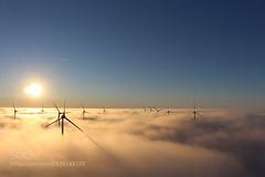 Morgenstunde in Holland 8.... (albertquiles) Tags: holland nebel sonnenaufgang windrder sonnenschein morgenstunde windenergie windkraftanlagen