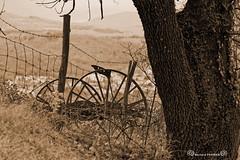 Le temps qui passe ..... (bernard63000) Tags: nikon machine campagne auvergne ancienne puydedme agricole d700 28300mmf3556