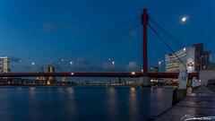 Willemsbrug bij volle maan (dorsman1970) Tags: rotterdam blauw nederland brug maas stad architectuur willemsbrug landschap nachtfotografie rivier maan maaskade maanlicht
