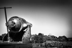 Civil War Cannon (TtownStudios) Tags: camp white black canon landscape nikon war best civil cannon