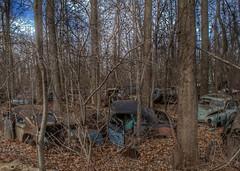 DSC08589.ARW-01 (juice95m3) Tags: abandoned rust vintagecar automobile junkyard oldcars classiccars