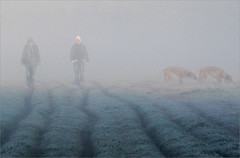 chilly (me*voil) Tags: people dogs fog hannover dogwalker altebult