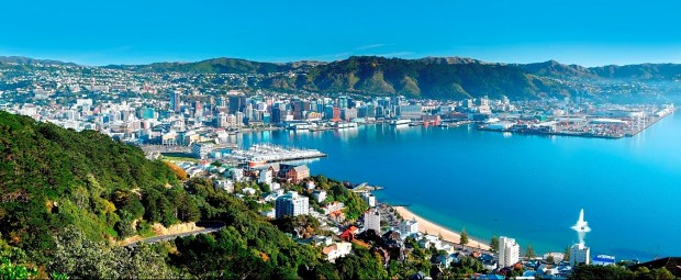 wellington-harbour-credit-rob-suisted_50223200