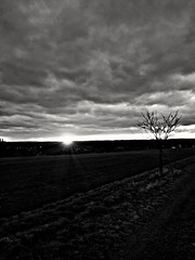 Unterwegs...mim Schatz  (i_shoot_the_moment) Tags: blackandwhite bw handy samsung sw schwarzweiss baw schwarzweis s5mini