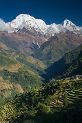Annapurna (Walter Quirtmair) Tags: blue nepal sky mountains green field rice himalaya annapurna 500px ifttt quirtmair