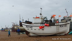 P1480502 (Pitzy's Pyx, keep snapping away!.) Tags: hastings fishingboats eastsussex lumixfz200