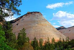 Checkerboard Mesa (filippo rome) Tags: park parco usa mountains nature utah nationalpark unitedstates natura zion zionnationalpark montagna statiuniti usanationalpark