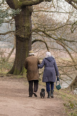 In Step (Andrew_Leggett) Tags: dog love walking togetherness couple yorkshire tranquility dachshund age harmony february loyalty ageing agreement instep intune andrewleggett