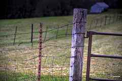 Farmland Fence_160080 (rjmonner) Tags: ranch orange brown green field barn rural fence wire gate farm country rustic shed iowa barbedwire agriculture pastoral agricultural backwoods irongate hogwire jacksoncounty woodpost agronomic fencefriday steelstake