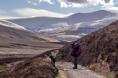 Mosedale walking (6) (allybeag) Tags: camera dog snow photographer steve lakedistrict hills cumbria fells bordercollie skiddaw intothesun mungrisdale ghyll mosedale skiddawhouse