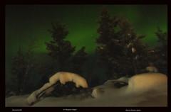 Karesuando A Magical Night (Nobby1968) Tags: snow green finland lights sweden aurora lapland northern borealis sami karesuando karesuvanto