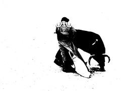 Capeando (aficion2012) Tags: bw france monochrome fight sebastian capa monotone bull bn toros duotone arles francia corrida toro toreador capote capea faena matador torero toreo castella capear garcigrande capeando capeador